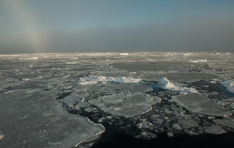 Location of the Arctic | Credit: Wikimedia Commons