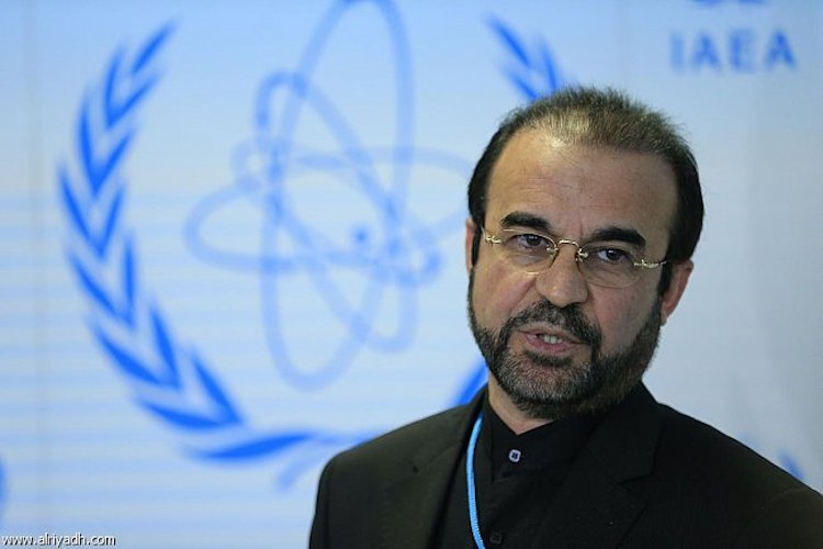 Photo: Ambassador Reza Najafi, Iran's Permanent Representative to the UN in Vienna.