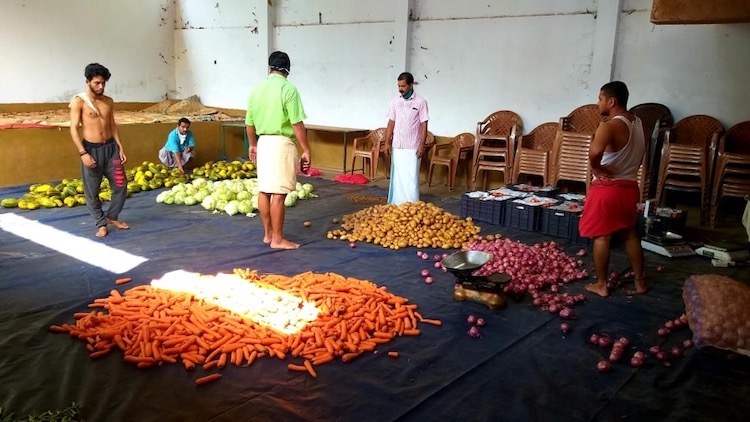 Photo: India's communist party workers engaged in packing of vegetable kits to be distributed.